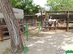 Mofos - Save a horse ride a cock