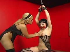 Bound bitch is spanked, clamped and bdsm trea