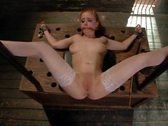 Petite teen spreads her arena perfectly